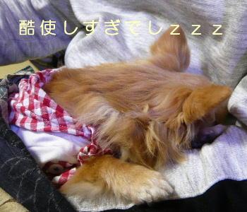 blog2014042507.jpg