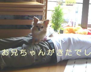 blog2014042702.jpg