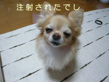blog2014052001.jpg