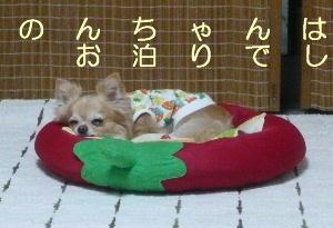 blog2014060304.jpg