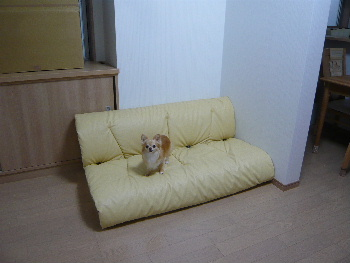 blog2014070305.jpg