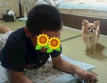 blog2014081401.jpg