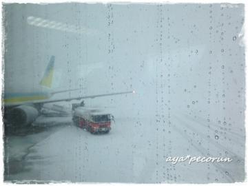 2014.3.9 函館空港到着時①