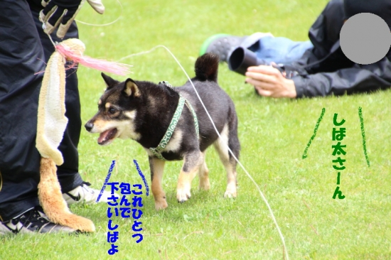 IMG_7432_AZUKI.jpg