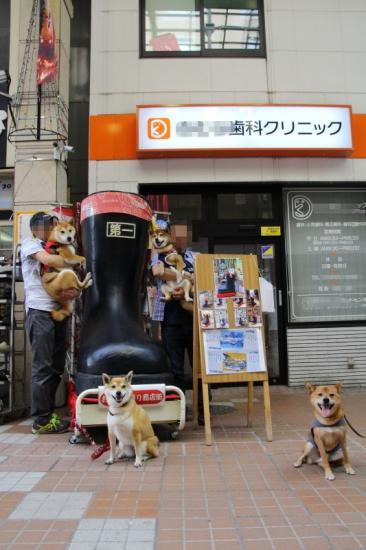 IMG_8067_AZUKI.jpg