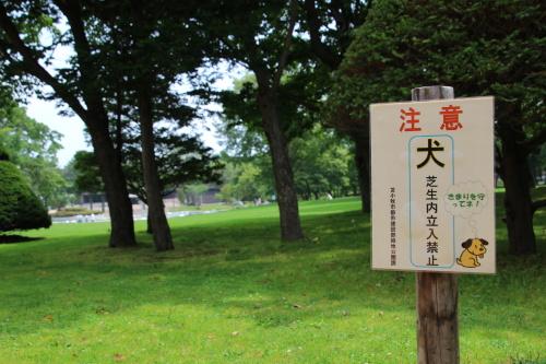 IMG_8422_AZUKI.jpg