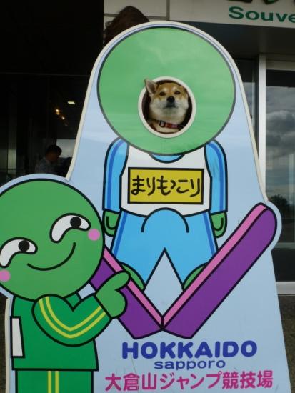 P1170660_AZUKI.jpg