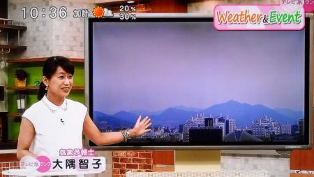 大隅智子 テレビ派_20140623180051