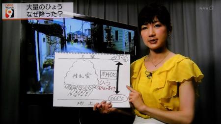 井田寛子 ニュースウォッチ9_20140626081623