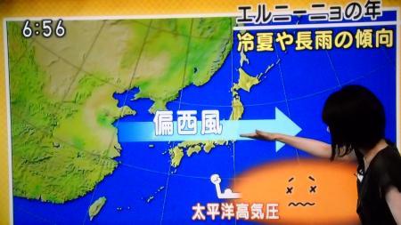 気象予報士 勝丸恭子_20140629080754