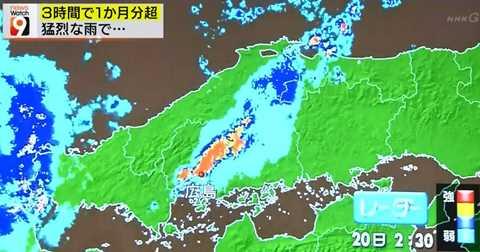 高解像度降水ナウキャスト ニュースウオッチ9_20140821-045138
