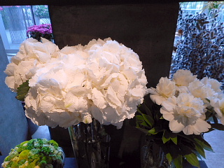 店内の花5