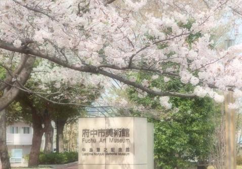 府中市桜 458