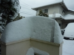 78年ぶりの大雪2