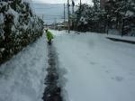 78年ぶりの大雪4