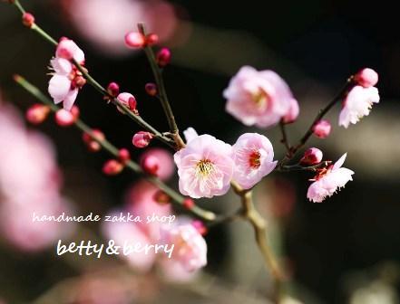 yun_13802.jpg