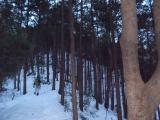 雪深い登山道