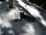 埋もれた道標