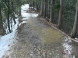 泥の道と化したトレイル