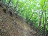 丹波への下山路