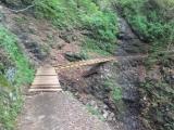 修復された橋