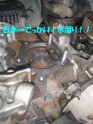 DVC00010_201408042318588f1.jpg