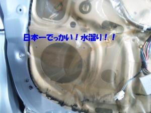 DVC00158.jpg