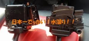 P3090004.jpg