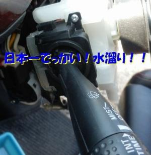 P3090008.jpg