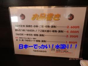 P7050001.jpg