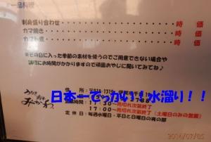 P7050002.jpg