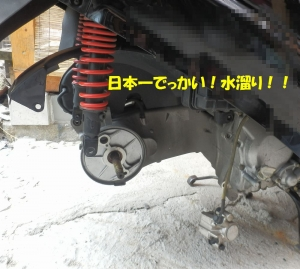 P7060003.jpg