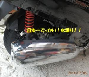 P7060004.jpg