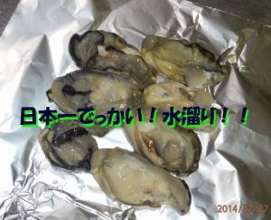 P7270016.jpg