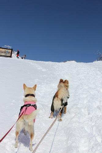 IMG_0724地蔵岳