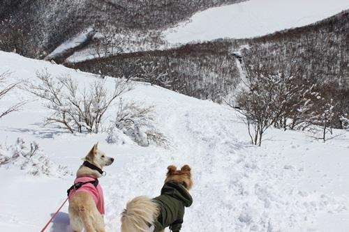 IMG_0798地蔵岳