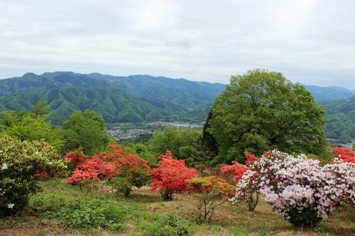 IMG_2088宝登山