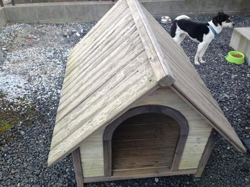 犬小屋001