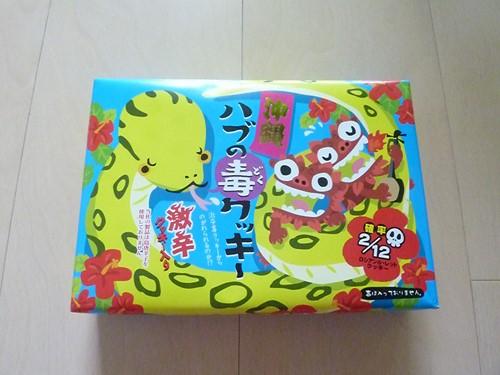 沖縄写真 (59) (コピー)