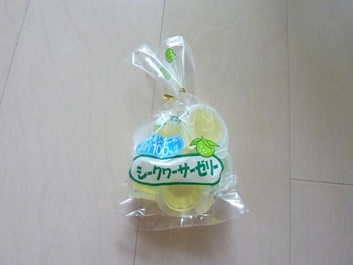沖縄写真 (67) (コピー)