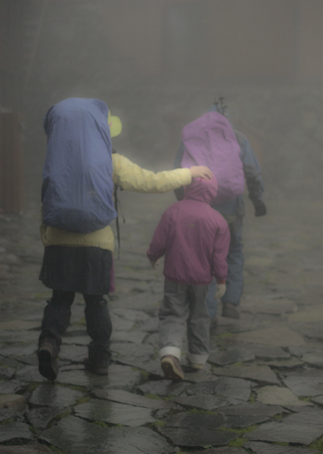 140811 雨の小屋_5