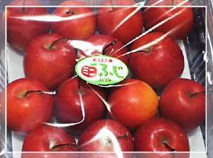 ミニふじりんご01