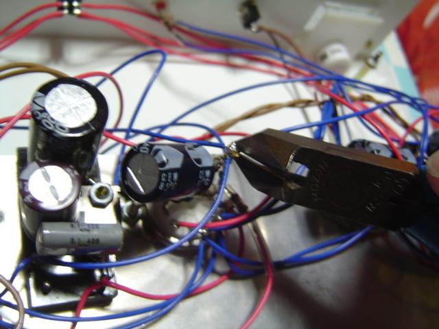 DSC05535.jpg