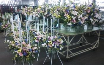 花・2014スタンド8-2-1