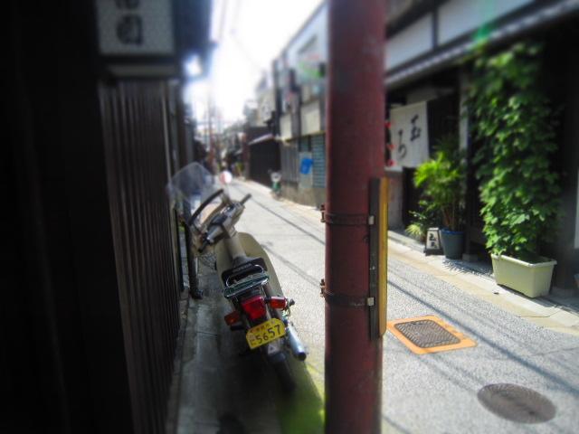 IMG_0641.jpg
