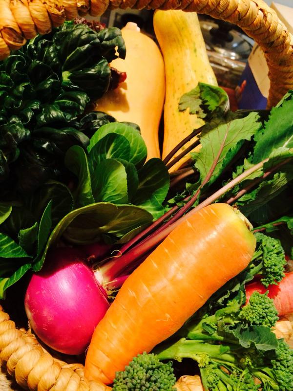 2014.2.13 丹波野菜