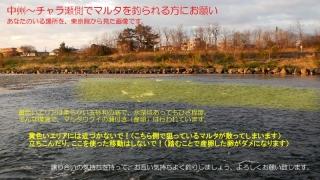 DSCN1606s.jpg