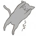 kattie