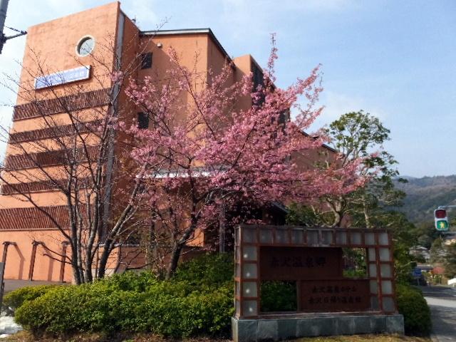 201402akazawa0089.jpg