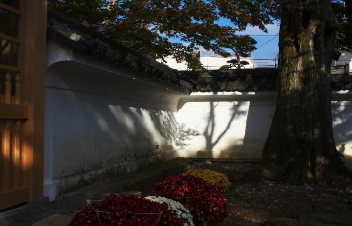 修禅寺-378-1